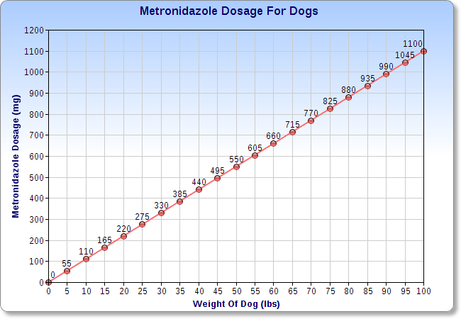 Metronidazole For Dogs | Veterinary Place