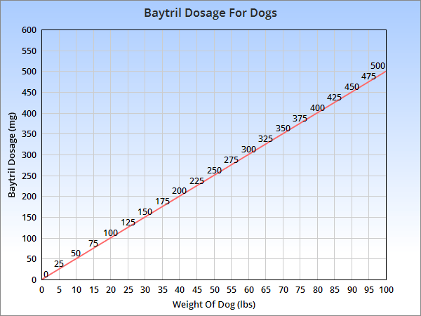 Typical dosage of Baytril for dogs