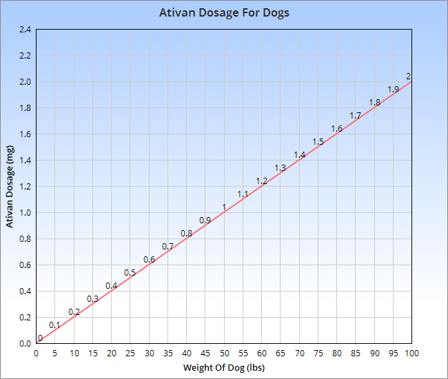 Ativan For Dogs Veterinary Place