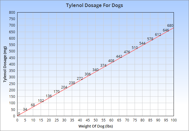 Tylenol Dosage For Dogs Why Acetaminophen And