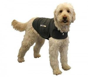 The ThunderShirt jacket